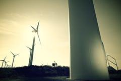 Ветрянки на восходе солнца Стоковая Фотография RF
