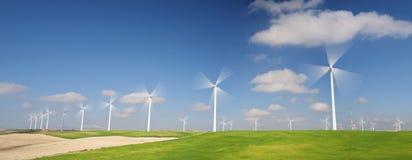 Ветрянки на восходе солнца Стоковые Фото