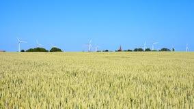 Ветрянки на поле хлопьев, запачканном переднем плане Стоковое фото RF