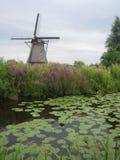 Ветрянки на Kinderdijk, Нидерландах Стоковая Фотография