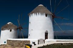 2 ветрянки на Mykonos Стоковые Фотографии RF