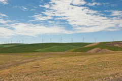 ветрянки рядка Стоковая Фотография RF
