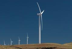 ветрянки стаи Стоковые Фотографии RF