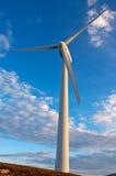 ветрянки Стоковые Изображения
