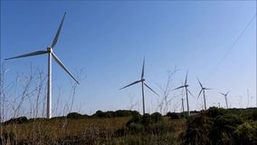 ветрянки сток-видео