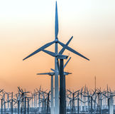 ветрянки Стоковое фото RF