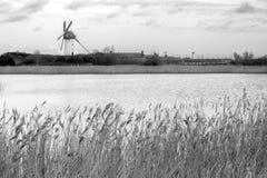 Ветрянки Skerries Стоковая Фотография RF