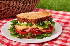 Ветчина лета и сандвич сыра провозглашанные тост пикником Стоковая Фотография RF