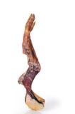 ветчина косточки Стоковая Фотография