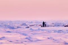 вечер ландшафта зимы Стоковая Фотография
