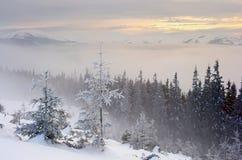 Вечер в горах Стоковая Фотография RF