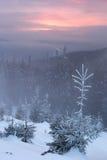 Вечер в горах Стоковая Фотография