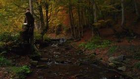 Вечер в реке и водопаде горы леса осени видеоматериал