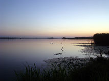 вечер Заход солнца над озером стоковое изображение rf