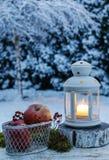 Вечер зимы в саде Железный фонарик и корзина яблок Стоковые Изображения