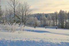 Вечер зимы Стоковые Изображения