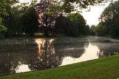 Вечер на пруде в парке Стоковые Фотографии RF