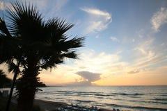 Вечер на пляже стоковая фотография