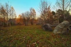 Вечер осени в парке города Стоковое Изображение