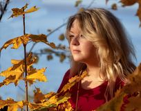вечер Осень женщина Портрет молодой женщины в осени Стоковая Фотография RF