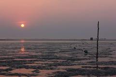 Вечер пляжа Стоковое Изображение RF