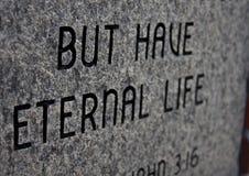 вечная жизнь Стоковое Фото