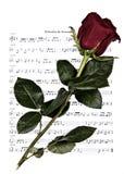 Вечная романтичная музыка стоковые изображения rf