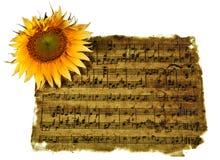 Вечная романтичная музыка стоковые изображения