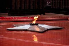 вечное пламя Стоковое Изображение