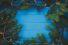 Вечнозеленая ветвь с светом рождества на голубых досках стоковые фотографии rf