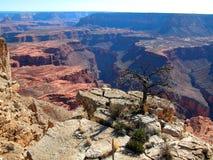 вечность каньонов Стоковые Изображения RF