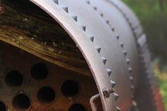 Вещи найденные в древесинах Стоковые Фото
