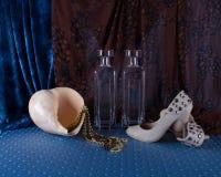Вещи ` s женщин ботинки, шарики, мечты каникул и здоровый li Стоковая Фотография RF