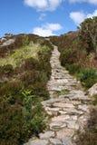 ведение footpath гористое Стоковые Фото