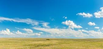 Великие равнины Стоковое Фото