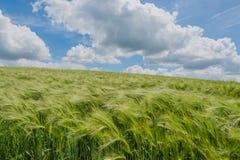 Великобритания - Donington на Bain Стоковое фото RF
