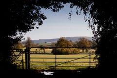 Великобританская сельская местность Стоковые Фотографии RF