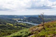 Великобританский район озера повысил район Cumbria Англию Великобританию озера Windermere взгляда в лете Стоковое Изображение