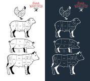 Великобританское мясо режет диаграммы бесплатная иллюстрация