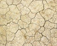 Великолепная земная предпосылка текстуры Стоковая Фотография RF