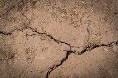 великолепная сухая почва Стоковые Фотографии RF