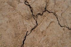 великолепная сухая почва Стоковые Изображения RF