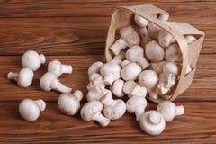 Величают champignons разлитые от корзины Стоковое Фото
