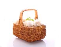 величают champignons Стоковое Фото