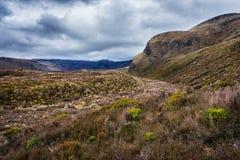 Величественный взгляд национального парка Tongariro Стоковая Фотография