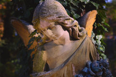Величественный взгляд статуи золотого ангела загоренной солнечным светом Стоковое Изображение