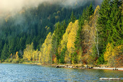 Величественный красочный лес осени и ландшафт, озеро St. Anna, Трансильвания, Румыния Стоковая Фотография