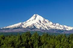 Величественный клобук Mt. Стоковые Изображения RF
