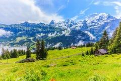 Величественный панорамный взгляд Eiger, Monch, гор Jungfrau от Murren-Gimmelwald отстает, швейцарские горные вершины, Bernese Obe Стоковая Фотография RF