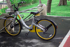 Велосипед автостоянки и велосипед в парке Стоковое фото RF